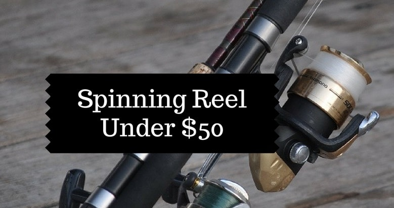 Spinning Fishing Reels review