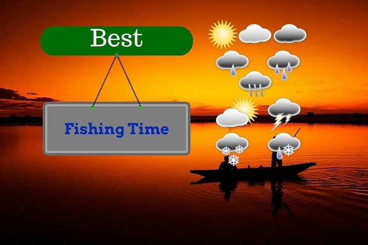 best fishing times to fish in different weather and climate
