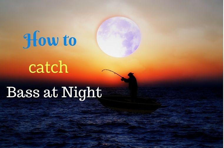 Tips on how to catch bass at night