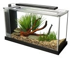 Fluval Spec V 5-Gallon Aquarium Kit review