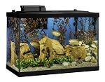tetra aquarium kit review