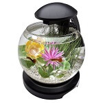 Tetra Waterfall Globe 1.8 Gallon Aquarium Kit review