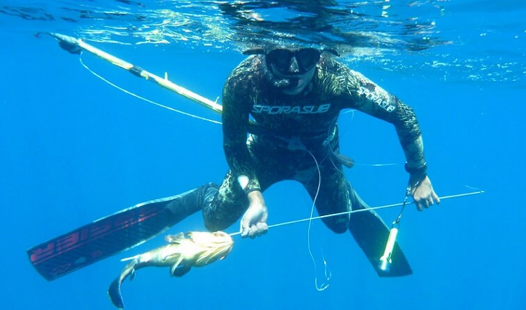Spear Fishing Guide
