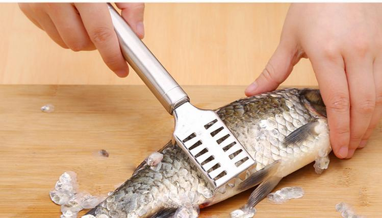 Best fish scaler review manual automatic and electric for Best fish scaler