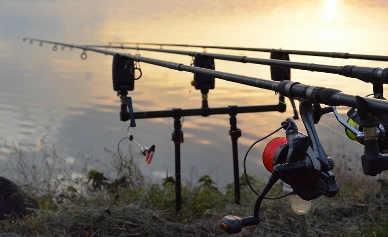 best bass fishing rods review