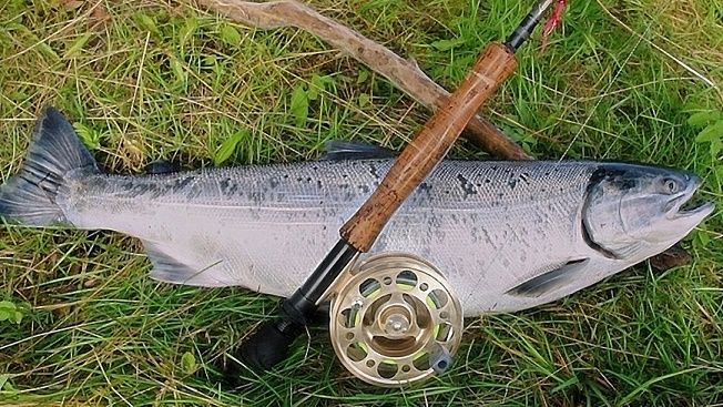 how to choose best fly reels