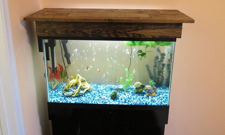 DIY Basic Aquarium Canopy